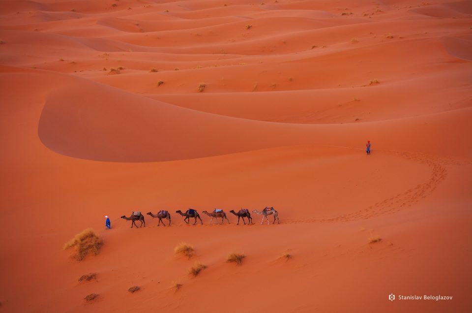 На верблюдах к жителям пустынь…